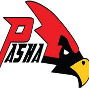[Pasha Team]  Necmettin