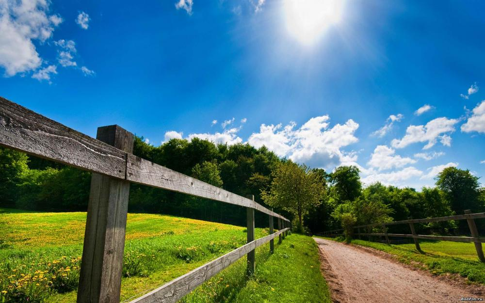 Sunny-Day-Beautiful-Landscape-Wallpaper.jpg