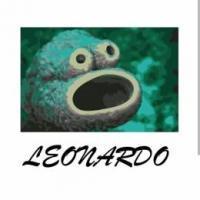 [L'Transport] Leonardo