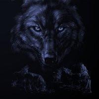 Wolfie.