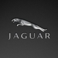 -JaguarP