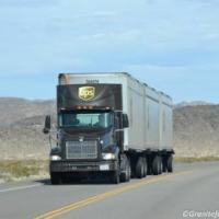truckerboy 50