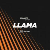 Llama_louis