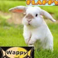 FlappyWappy