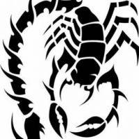 Scorpion993