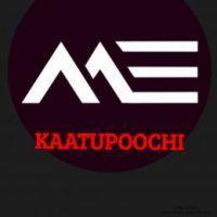 Kaatupoochi