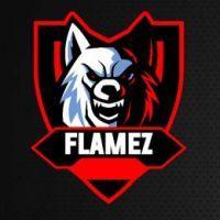 FlamezDasTruckFahrer