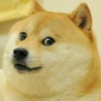 _Doge