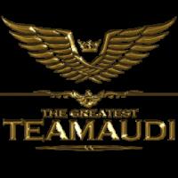 TeamAudi_Dongkyu_EM