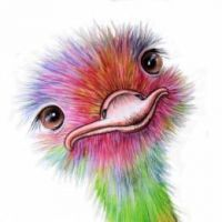OstrichTheGamer