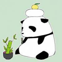 Northeast Panda